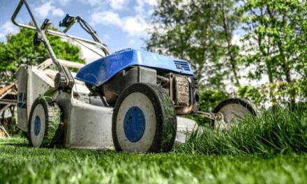 Skab dit eget frirum i din baghave